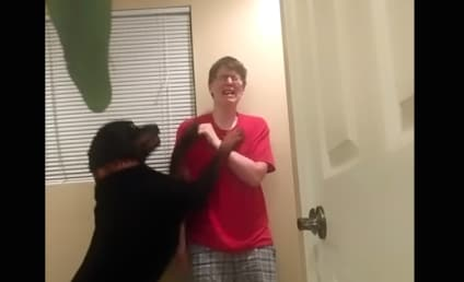 Amazing Dog Helps Owner Control Asperger's Meltdown