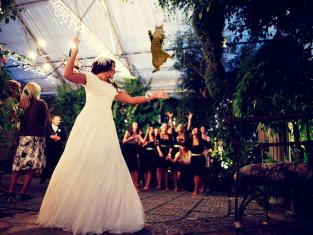 Bride Throwing Cat: Meme 5