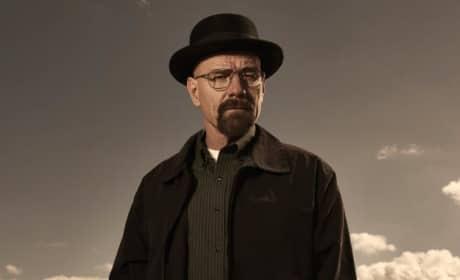 Bryan Cranston as Walt