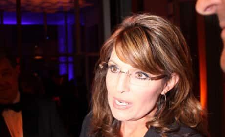 Sarah Palin Interview Pic