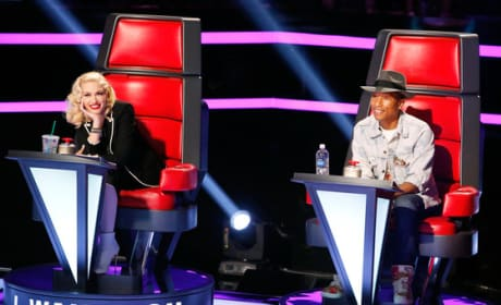 Grade Gwen Stefani and Pharrell on The Voice Season 7.