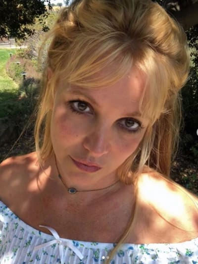 Britney's Day In Court