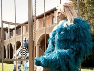 Feathered Britney
