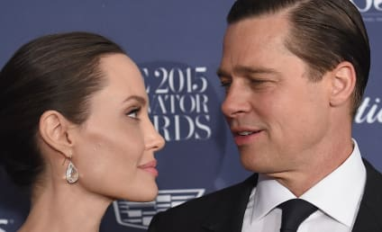 Brad Pitt & Angelina Jolie Fought About Lack of Sex, Adopting More Kids Before Divorce?