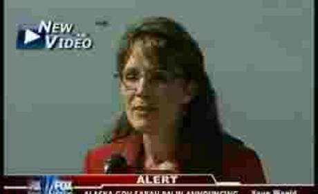 Sarah Palin Resignation