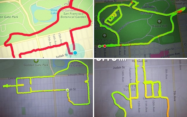 Creative uses of map my run a puppy