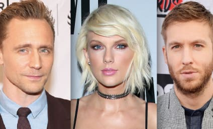 Celebrity Breakups of 2016: Double Trouble for Taylor!