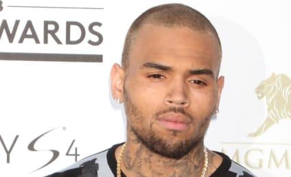 Chris Brown Car Crash: Singer and Karrueche Tran Rear-End Mercedes