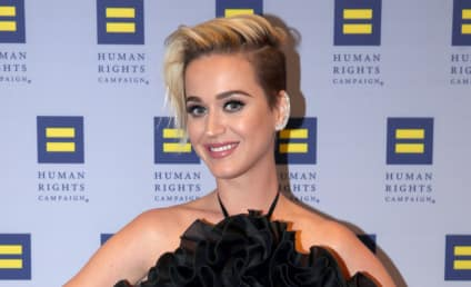 Katy Perry Undergoes Radical Makeover: See the Photo!