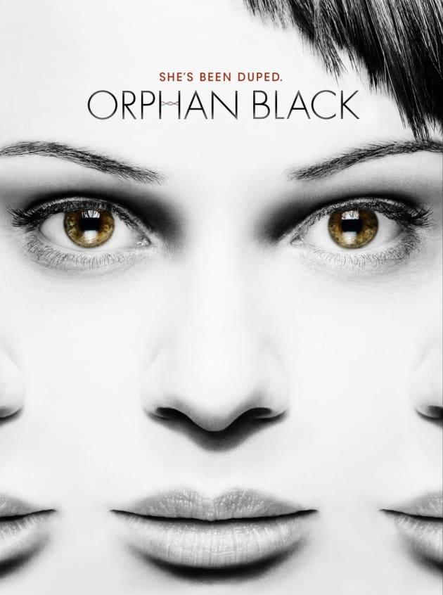 Orange is the New Black Poster: Sophia - The Hollywood Gossip