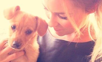 Lauren Conrad Adopts Cutest Puppy Everrrrrrrrrrr