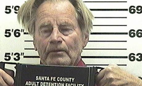 Sam Shepard: Arrested for DUI