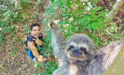 Sloth Selfie Proves There is Good in the World After All