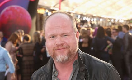 Joss Whedon is a LIAR and a CHEAT, Ex-Wife Fumes