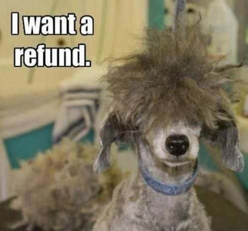 Refund Please!