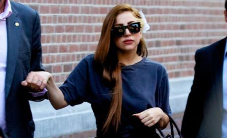 Lady Gaga, Louis Vuitton