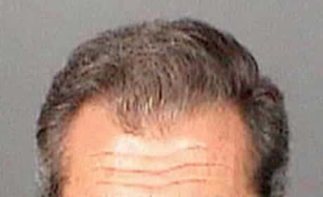 Mel Gibson Mug Shot (2011)