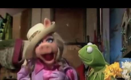 Miss Piggy Remixes Rihanna: You Better Have Her Money!