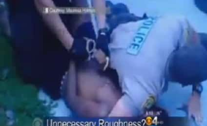 """Police Officers Restrain 14-Year Old with Puppy in Arms, Cite """"Dehumanizing Stares"""""""