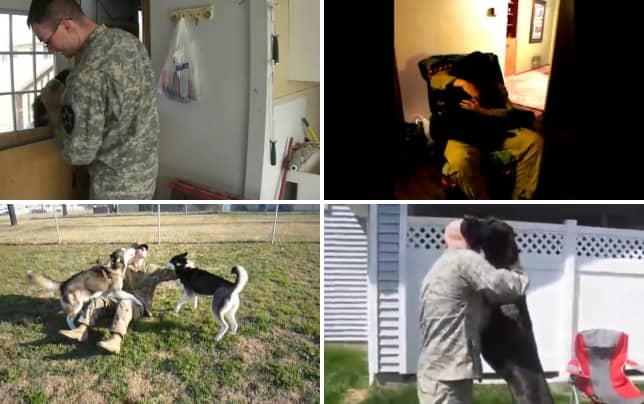 Dog reunites with soldier