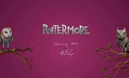 Pottermore: What is J.K. Rowling's New Project?!