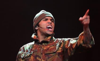 Chris Brown and CM Punk: Twitter Feud Alert!
