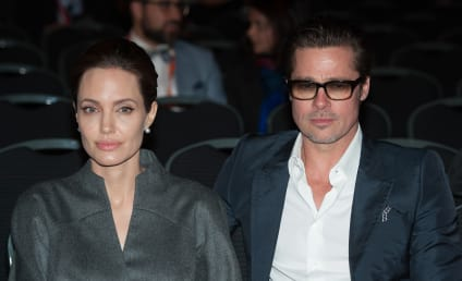 Angelina Jolie and Brad Pitt: Screaming at Each Other on Vacation?!