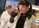 Pauley Perrette: I Was Attacked By a Homeless Guy! AGAIN!