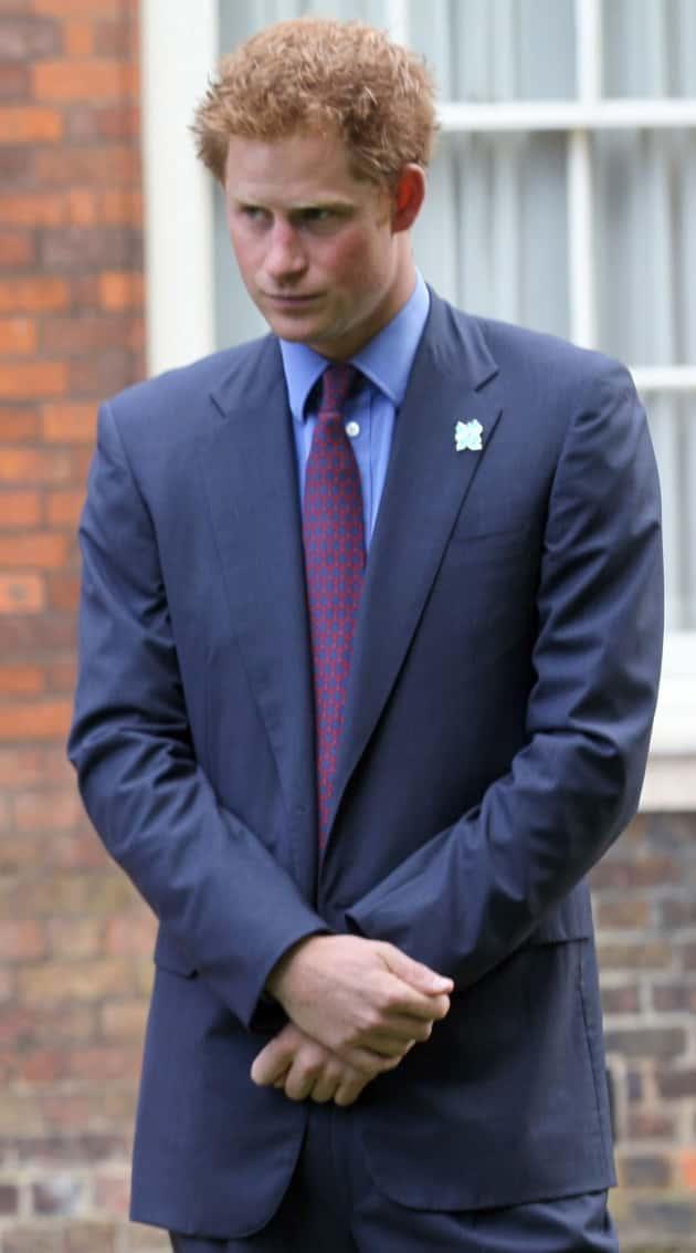 Harry the Prince