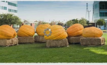 Google Pumpkin Carving Video: Coolest Logo Ever?