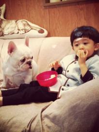Boy and His Bulldog Photo