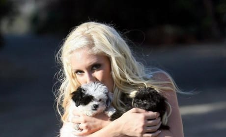 Heidi and Her Dogs