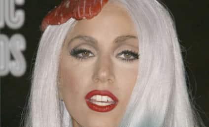 Alex Stebbins: Lady Gaga Stole Luc Carl From ME!