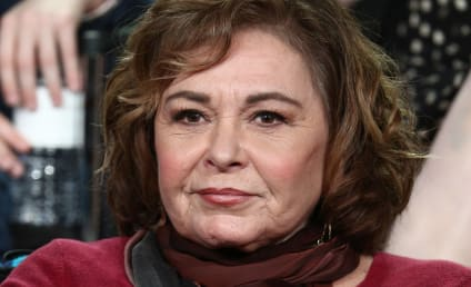 Roseanne Barr: I'll Make Restitution, But I Did Nothing Wrong!!