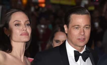 Angelina Jolie: Brad Pitt Has Lost His Damn Mind!