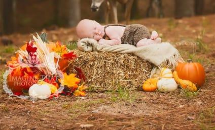 Deer Photobombs Sleeping Baby, Rings in AWW-tumn