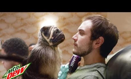 Puppy Monkey Baby Super Bowl Commercial