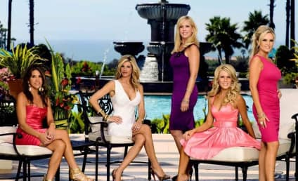 The Real Housewives of Orange County Recap: Couples Counseling
