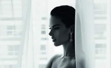 Alessandra Ambrosio: Nude on Facebook!