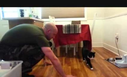 """LOL ALERT: Cats """"Welcome"""" Home Military Owners"""