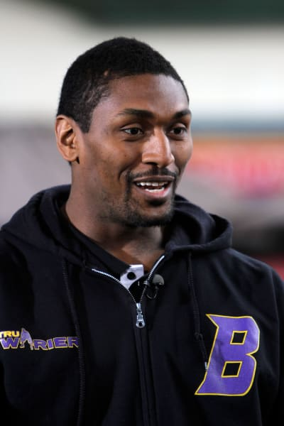 Ron Artest Pic