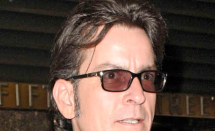 Charlie Sheen Wants to Have Kids with Brooke Mueller, Hates Denise Richards