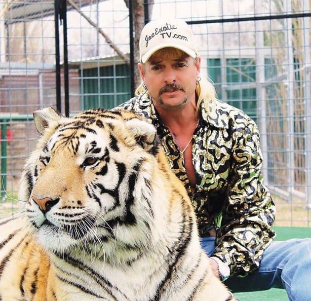 tiger zoophilia