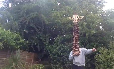 Guy in Giraffe Mask Sings Marvin Gaye, Breaks Internet