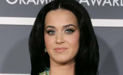 Katy Perry Grammys Dress: WHOA!