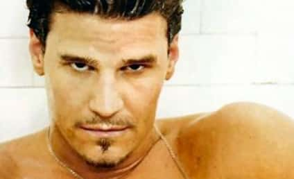 Happy Birthday, David Boreanaz!