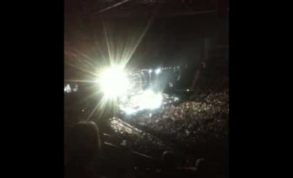 """Concert Goers Walk Out on Whitney Houston, Refer to Singer as """"Rubbish"""""""