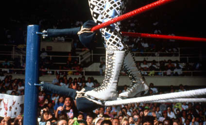Cause of Death Determined in Passing of Randy Savage
