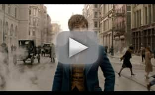 Fantastic Beasts and Where to Find Them: FIRST LOOK!