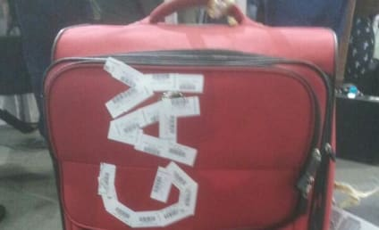 """Australian Airline Apologizes for """"I AM GAY"""" Luggage Defacement"""